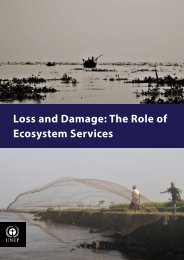 Loss and Damage The Role of Ecosystem Services