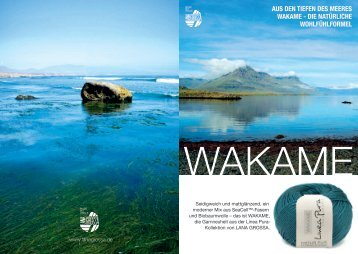 wakame-flyer