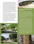 ISSUE - Page 5