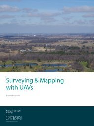 Surveying & Mapping with UAVs