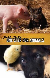 One step for Animals