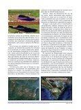 Un proyecto de nación - Page 6