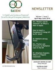 SASEM-Newsletter-no.2