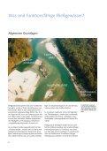 Lebensraum Fließgewässer Restaurieren und Entwickeln - Seite 7
