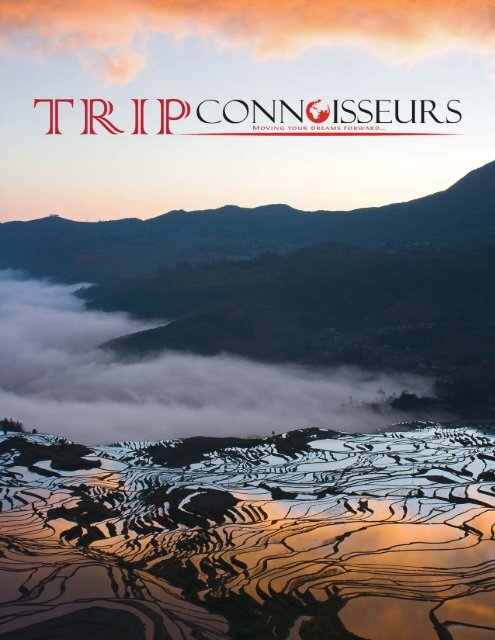 Trip Connoisseurs Profile - Chinese