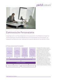 Download Produktdatenblatt perbit views