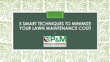 5 Smart Techniques to Minimize your Lawn Maintenance