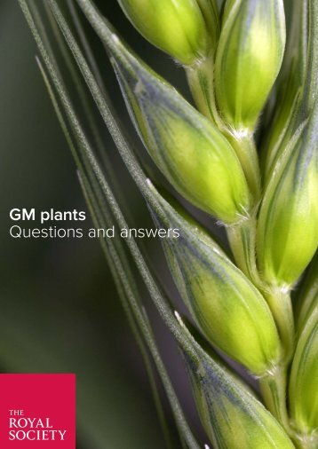 GM plants Questions and answers