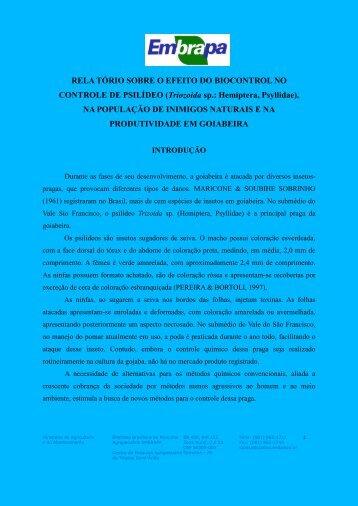 Efeito Biocontrol Goiabeira