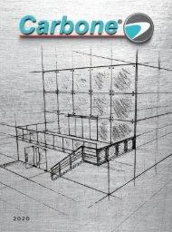 Catálogo Carbone 2020