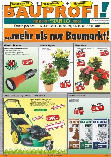 Bauprofi_KW22_online