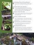 Pond Tour - Page 4