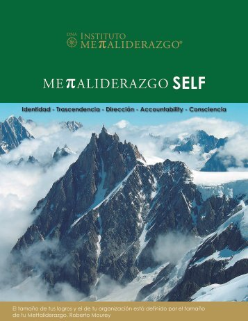 Identidad - Trascendencia - Dirección - Accountability - Consciencia
