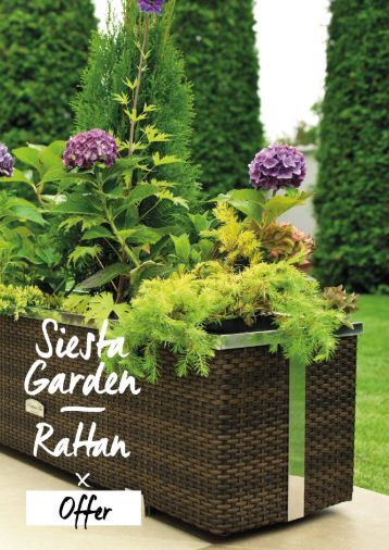 siesta-garden-rattan-en-v01