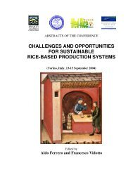 Ferrero und Vidotto - 2004 - Challenges and opportunities for sustainable rice-