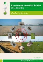 Lupi et al. - 2008 - Il punteruolo acquatico del riso in Lombardia