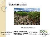 Tabacchi - 2004 - Danni da siccità - corso di formazione e aggiornam