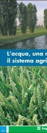 Tagliaferri und Merlo - L'acqua, una risorsa per il sistema agricolo lomba