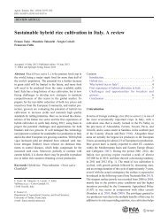 Tesio et al. - 2013 - Sustainable hybrid rice cultivation in Italy. A re