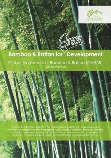 Bamboo & Rattan for Development