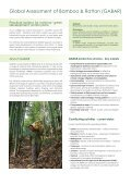 Bamboo & Rattan for Development - Page 2