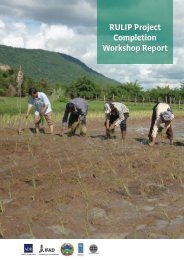 RULIP Project Completion Workshop Report