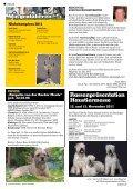 "Border Terrier ""Rasputin v.d. Border Meute"" - Seite 2"