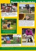 "Border Terrier ""Rasputin v.d. Border Meute"" - Seite 6"