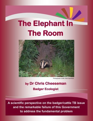 The Elephant In The Room *