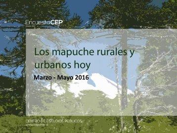 Los mapuche rurales y urbanos hoy