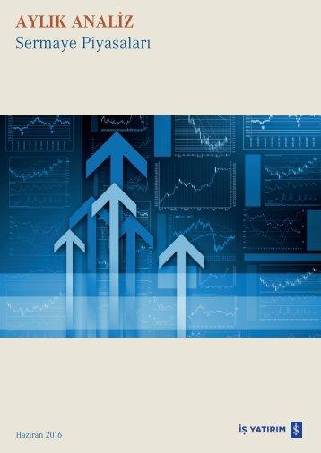 AYLIK ANALİZ Sermaye Piyasaları