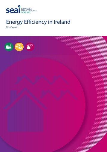 Energy Efficiency in Ireland