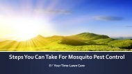 Steps You Can Take For Mosquito Pest Control