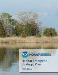 Habitat Enterprise Strategic Plan