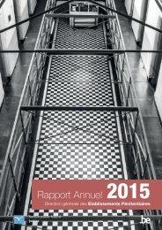 2016-06_epi_rapport_annuel_2015