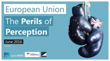 European Union The Perils of Perception