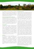 Nationales Naturerbe Stegskopf - Seite 2