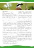 Nationales Naturerbe Stegskopf - Seite 5