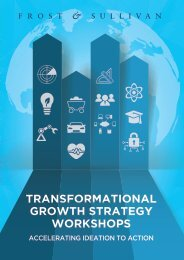 GROWTH STRATEGY WORKSHOPS