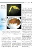 ENES Morelia emerge la primera generación - Page 5