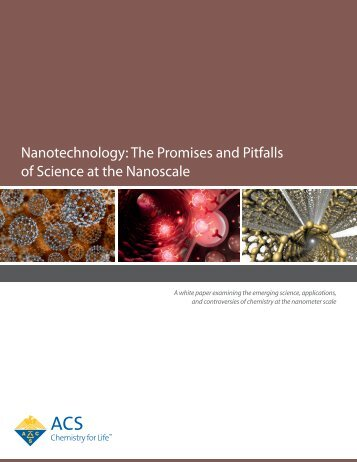 Nanotechnology The Promises and Pitfalls of Science at the Nanoscale