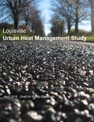 Louisville Urban Heat Management Study