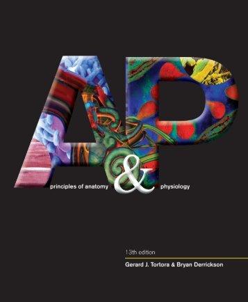 Seeleys Anatomy Amp Physiology 11th Edition