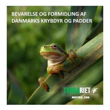 Bevarelse af Danmarks krybdyr og padder