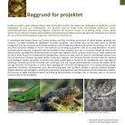 Bevarelse af Danmarks krybdyr og padder - Page 3