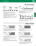 Apex - Nicholson - Page 3