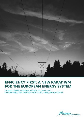 EFFICIENCY FIRST A NEW PARADIGM FOR THE EUROPEAN ENERGY SYSTEM
