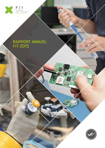 rapport annuel fit 2015