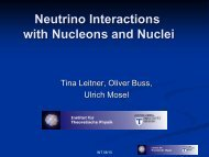 Neutrino Interactions with Nucleons and Nuclei - INT Home Page