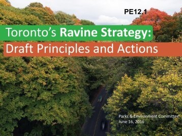 Draft Principles and Actions